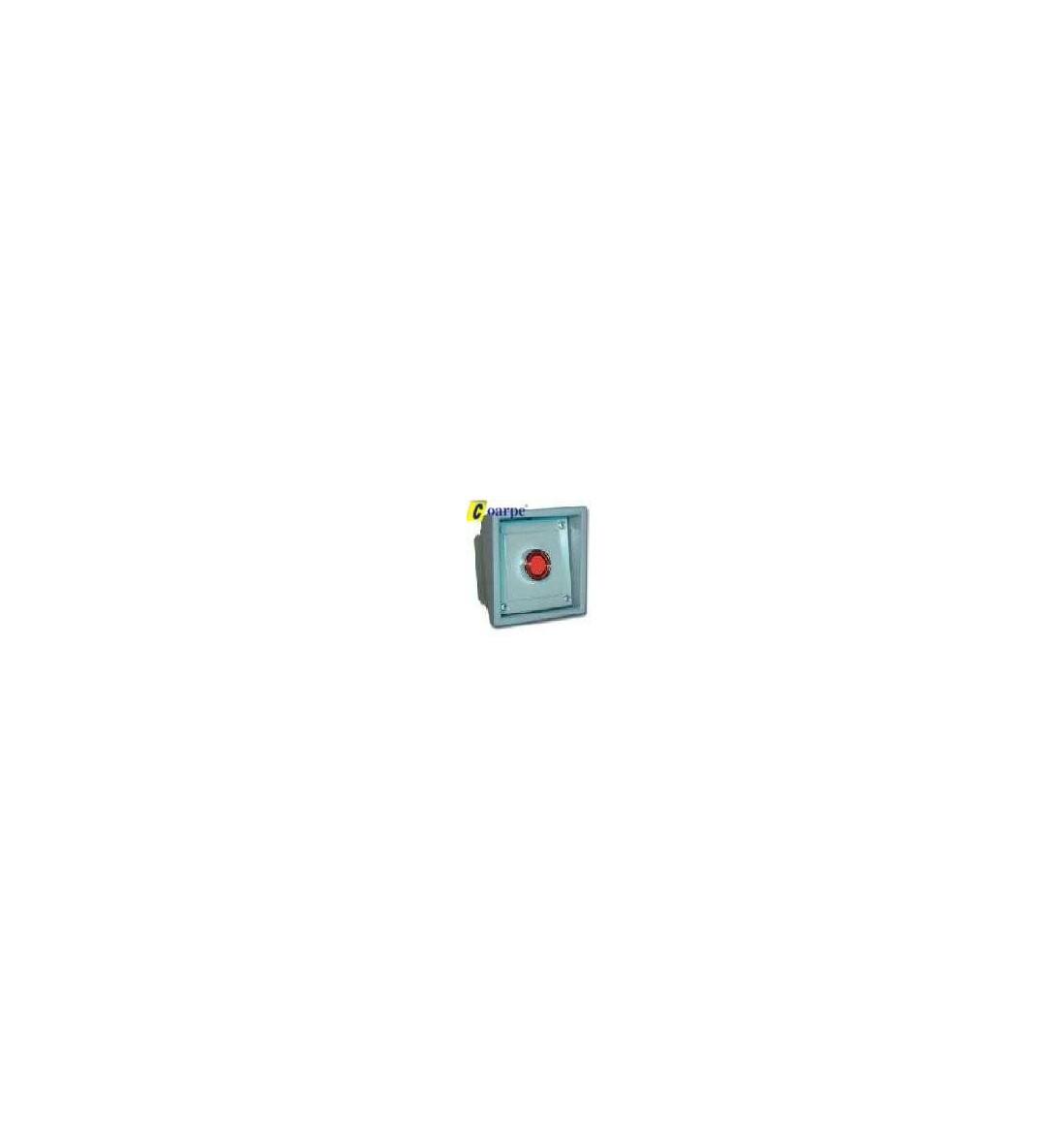 Botonera 1 pulsador